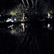 Dark Reflections Poster