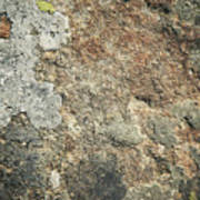 Dark Sandstone Surface With Moss Poster