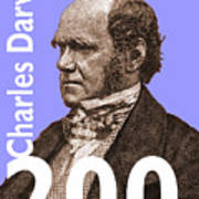Darwin 200 Lilac Poster