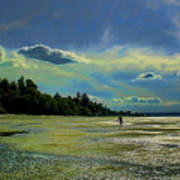Dash Point State Park Poster
