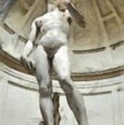 David By Michelangelo Pencil Poster