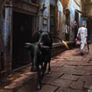 Day In Varanasi Poster