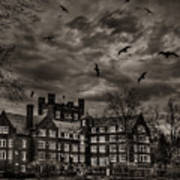 Daydreams Darken Into Nightmares Poster