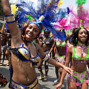 Dc Caribbean Carnival No 8 Poster by Irene Abdou
