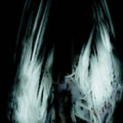 Dead Bird Grey Poster