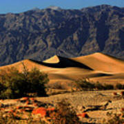 Death Valley's Mesquite Flat Sand Dunes Poster