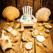 Deckchairs And Seashells Poster