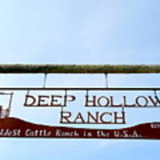 Deep Hollow Ranch Poster
