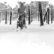 Deep Winter II Poster