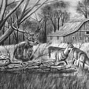 Deer Field  Poster