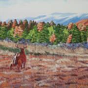 Deer In Fall Poster