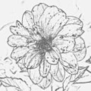 Lush Blossom Poster