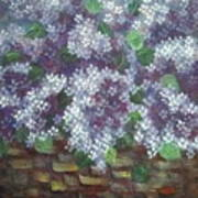 Delicate Perfumed Lilacs Poster