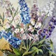 Delphiniums Poster