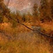 Deschutes River Abstract Poster