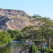 Deschutes River At Trout Creek Poster