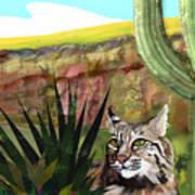 Desert Bobcat Poster