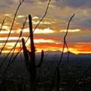 Desert City Sunset Poster