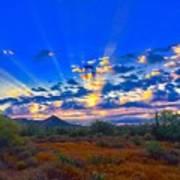 Desert Glory Poster