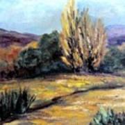 Desert in the Springtime Poster