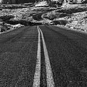Desert Journey B/w Poster