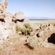 Desert Lake Poster
