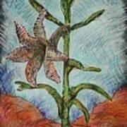 Desert Lily Poster