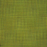 Desert Marigold Flowers Abstract Poster