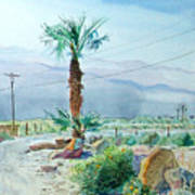 Desert Palm Poster