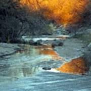 Desert Reflections Poster