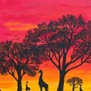 Desert Sunset 2 Poster