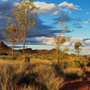 Desert Track Poster