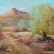 Desert Trails Poster