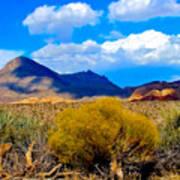 Desert View Poster
