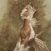 Devon The Gypsy Horse Poster
