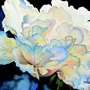 Dew Drops On Peony Poster