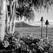 Diamond Head In Black And White Poster