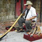 Didgeridoo Performer Poster