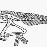 Dinosaur: Corythosaurus Poster