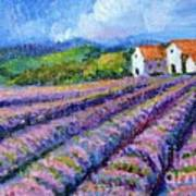 Distant  Houses And Lavender Fields Poster