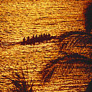 Distant View Of Outrigger Poster