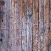 Distressed Door Poster