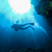 Diver At Pakin Atoll Poster