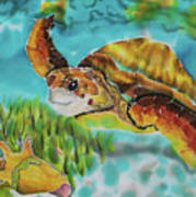 Diving Conch Poster