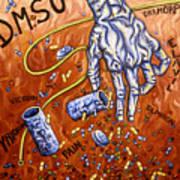 Dmso Poster