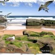 Do-00046 Birdie Beach Poster