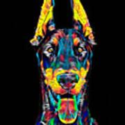 Doberman Dog Breed Head Pet Breed True Friend Color Designed Poster