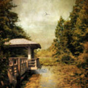 Dock On The Wetlands Poster