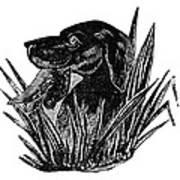 Dog, 19th Century Poster