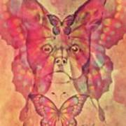 Dog And Butterfly Poster
